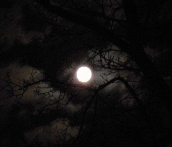 Mond 19.3.2011.0.47Uhr