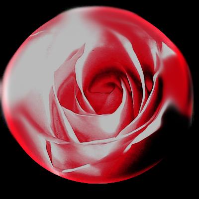 rose2rund